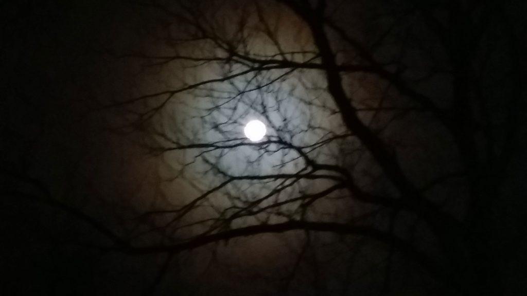 Rainbow Moon Eye